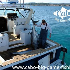 Cabo Big game fishing in Croatia