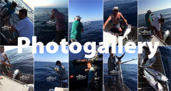 Big game fishing Kroatien