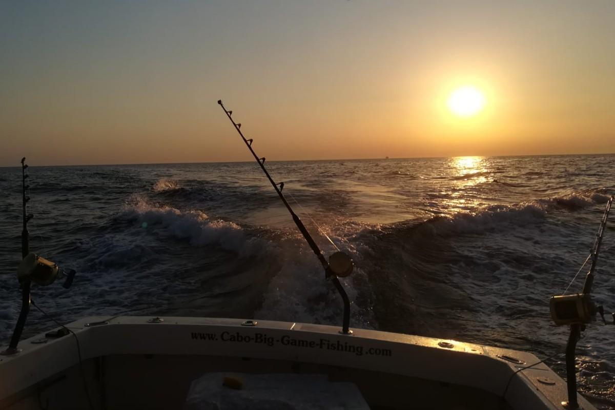 Fiskeri i skumringen